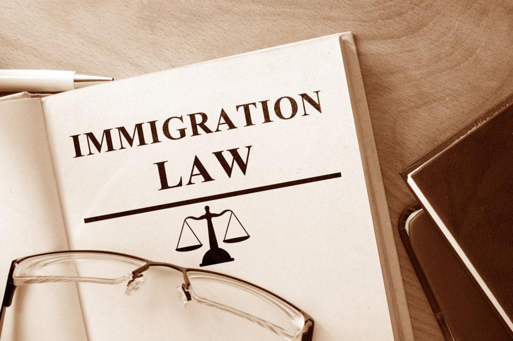 Best Immigration Attorney in Carrollton, TX